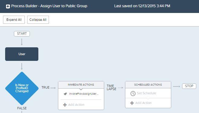 ProcessBuilder-AssignUsertoPublicGroup.JPG
