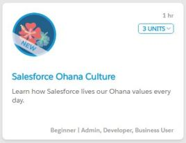 SalesforceOhanaCulture.JPG