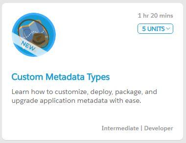 CustomMetadataTypeModule.JPG